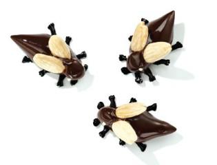 Feine Maikäfer aus Schokolade